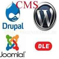 Ведущие компании CMS