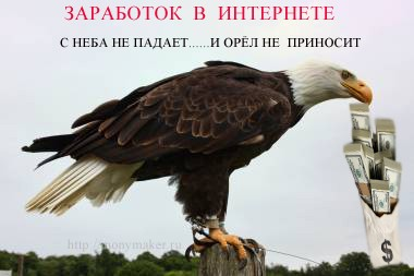 Орёл  с деньгами